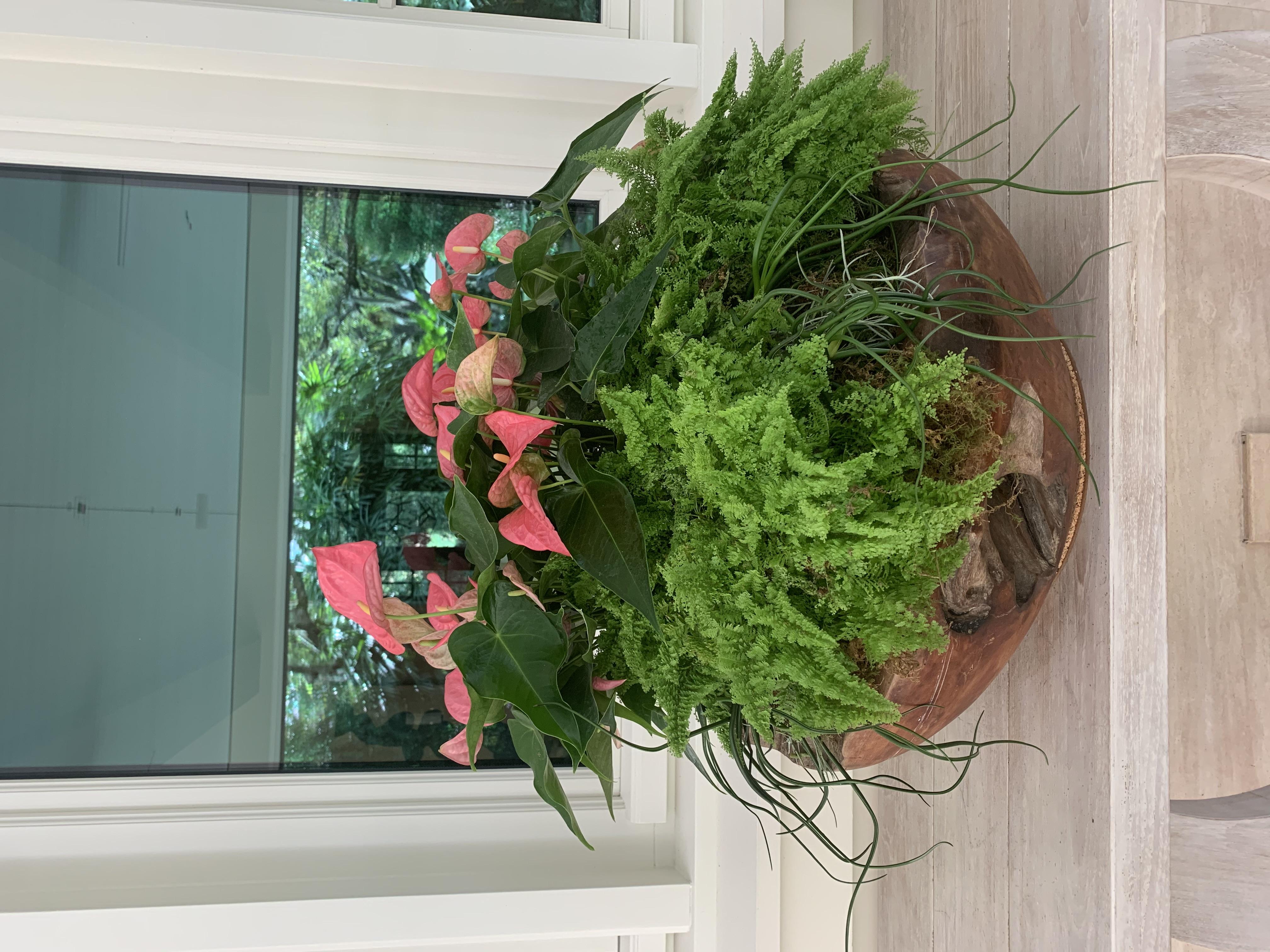 Ferns and Pink Lillies, Outdoor Arrangement Velene's Floral